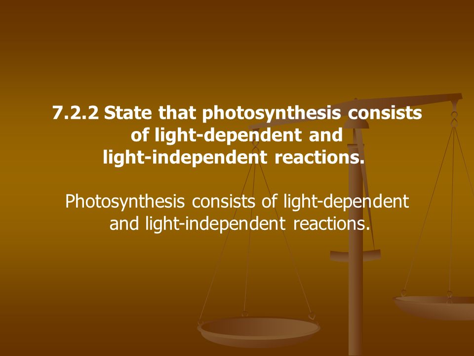 7.2.2 State that photosynthesis consists of light-dependent and light-independent reactions. Photosynthesis consists of light-dependent and light-inde