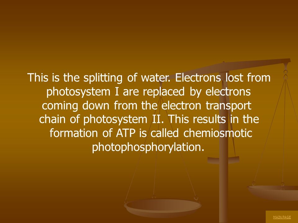 This is the splitting of water. Electrons lost from photosystem I are replaced by electrons coming down from the electron transport chain of photosyst