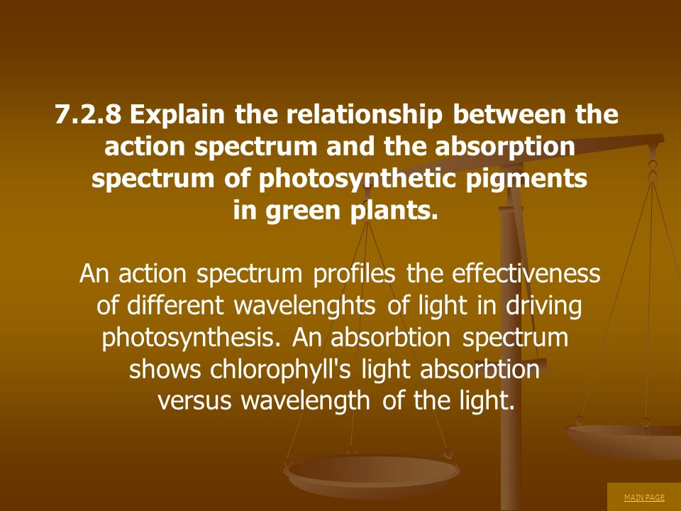 7.2.8 Explain the relationship between the action spectrum and the absorption spectrum of photosynthetic pigments in green plants. An action spectrum