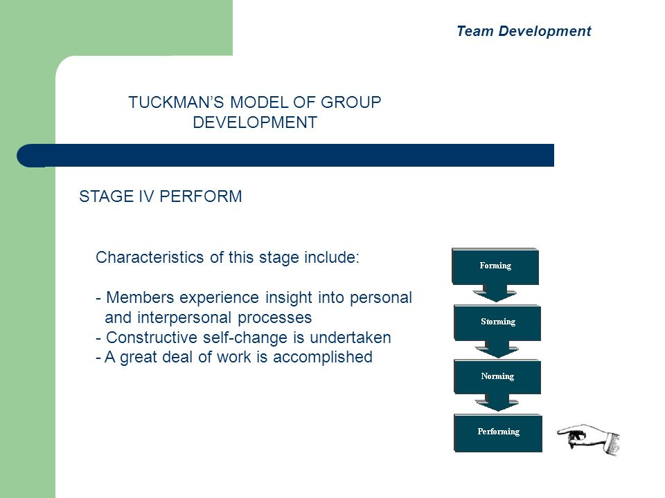 Characteristics of this stage include: - Members experience insight into personal and interpersonal processes - Constructive self-change is undertaken - A great deal of work is accomplished TUCKMANS MODEL OF GROUP DEVELOPMENT STAGE IV PERFORM Team Development