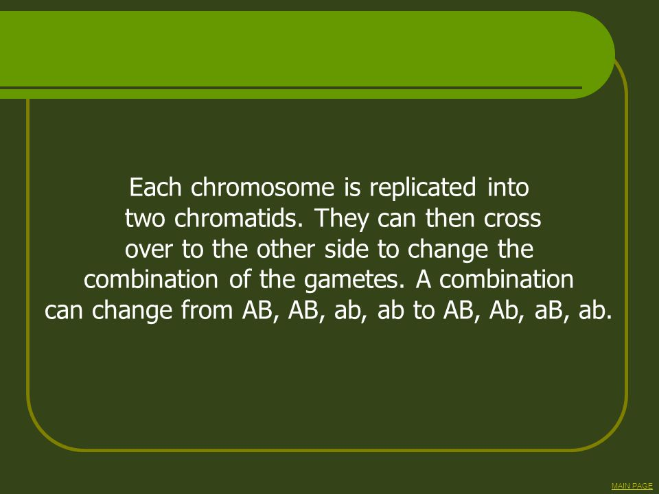 Each chromosome is replicated into two chromatids. They can then cross over to the other side to change the combination of the gametes. A combination