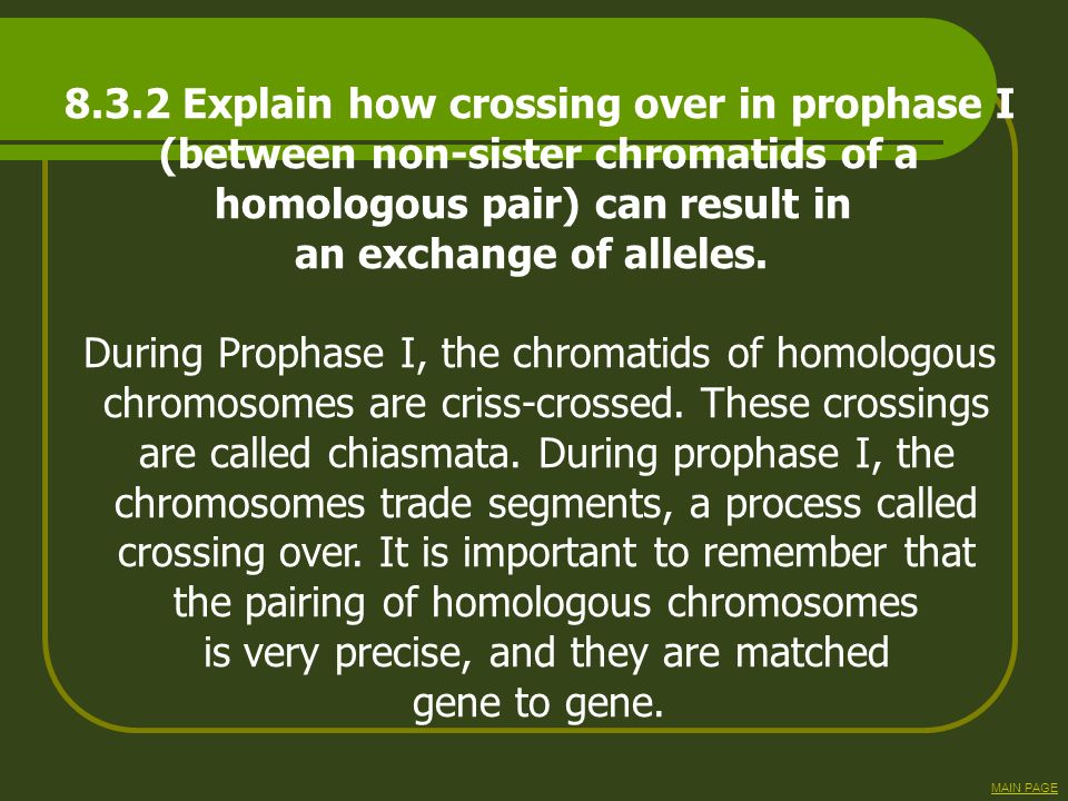 8.3.2 Explain how crossing over in prophase I (between non-sister chromatids of a homologous pair) can result in an exchange of alleles. During Propha