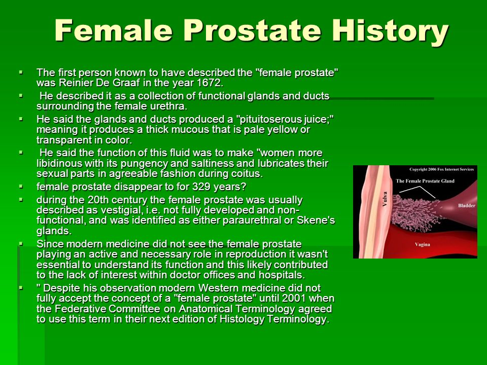 Female Prostate History The first person known to have described the