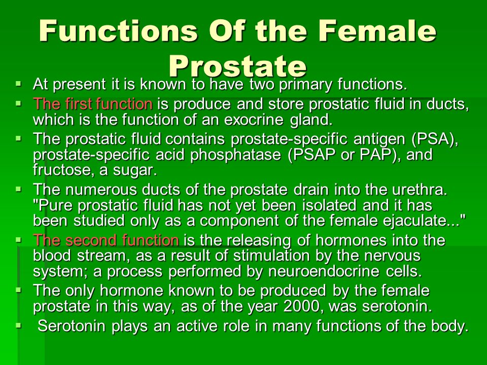 Functions Of the Female Prostate At present it is known to have two primary functions. At present it is known to have two primary functions. The first