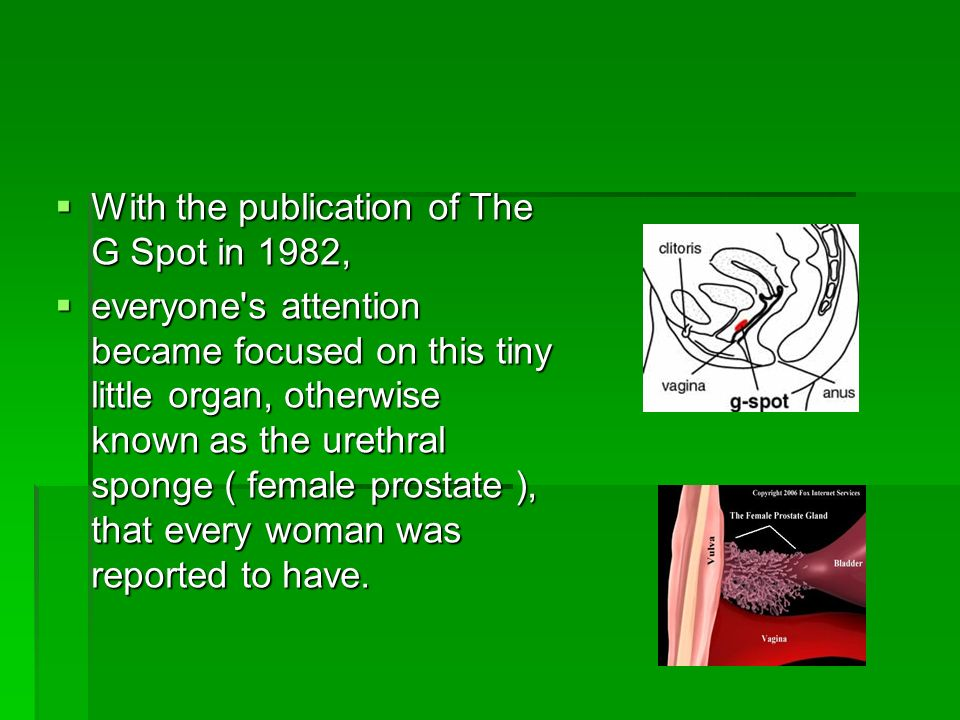 With the publication of The G Spot in 1982, With the publication of The G Spot in 1982, everyone's attention became focused on this tiny little organ,