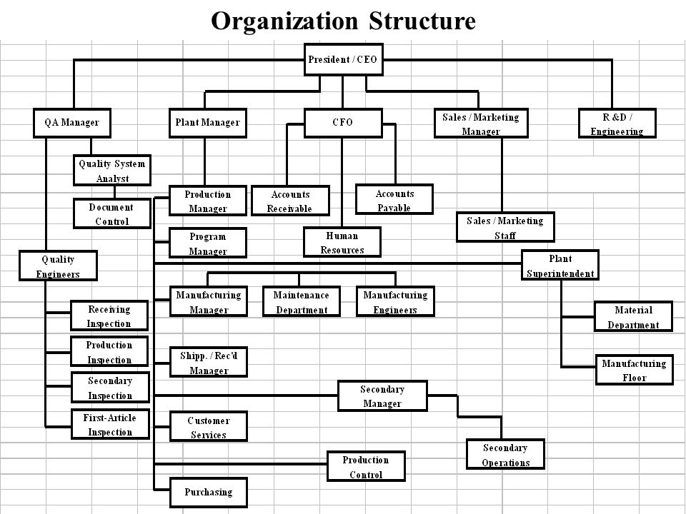 Quality Organization
