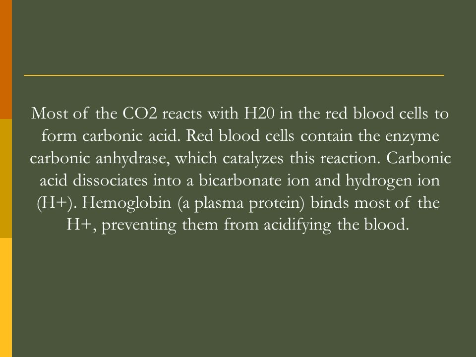 Most of the CO2 reacts with H20 in the red blood cells to form carbonic acid. Red blood cells contain the enzyme carbonic anhydrase, which catalyzes t
