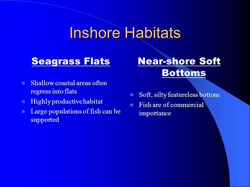 Inshore Habitats Salt Marshes Salt tolerable plants invade mudflats One of best nutrient producing habitats Will support large fish and invertebrates