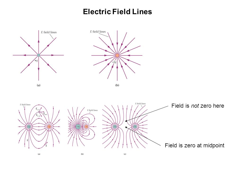 Drawing Electric Field Lines The lines must begin on positive charges (or infinity) The lines must end on negative charges (or infinity) The number of lines leaving a +ve charge (or approaching a -ve charge) is proportional to the magnitude of the charge electric field lines cannot cross