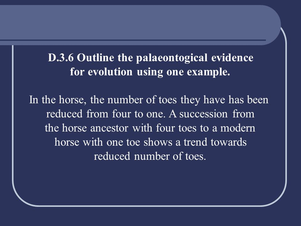 D.3.6 Outline the palaeontogical evidence for evolution using one example. In the horse, the number of toes they have has been reduced from four to on