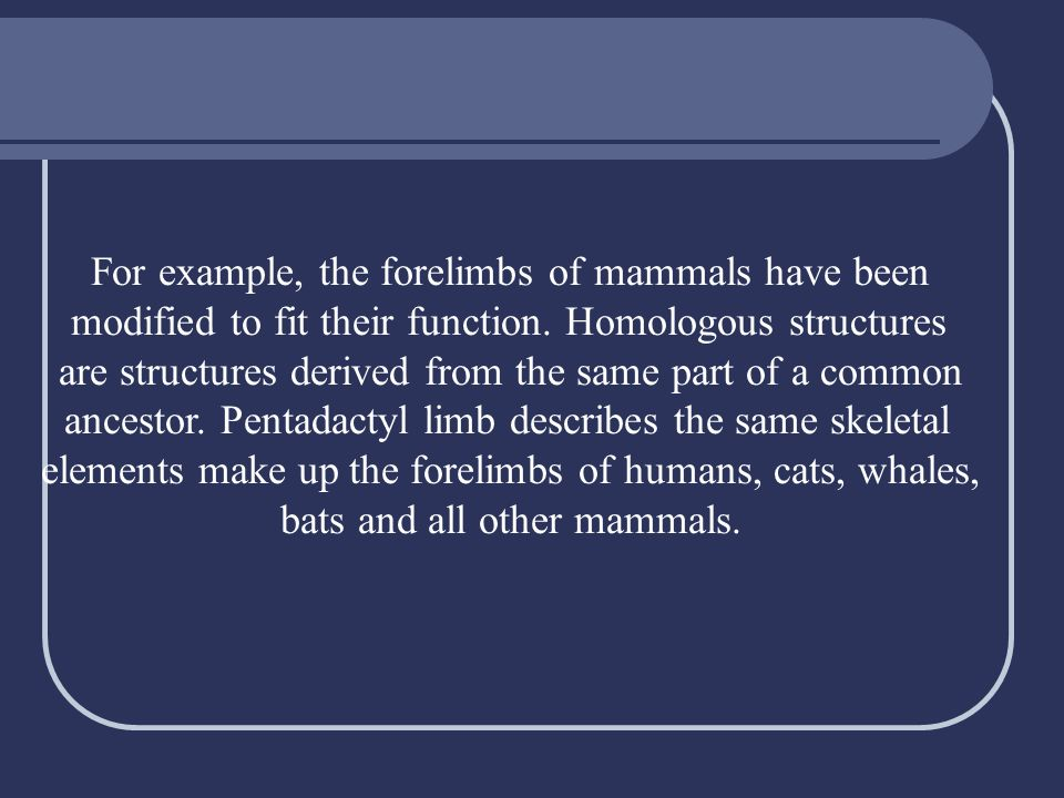 For example, the forelimbs of mammals have been modified to fit their function. Homologous structures are structures derived from the same part of a c
