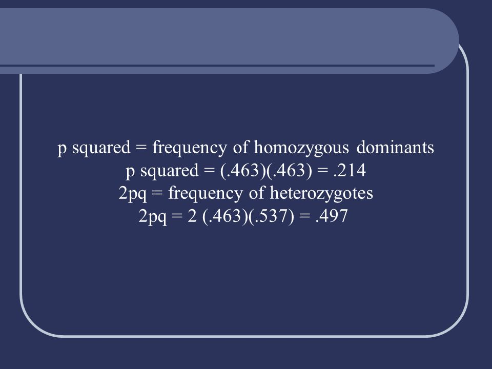 p squared = frequency of homozygous dominants p squared = (.463)(.463) =.214 2pq = frequency of heterozygotes 2pq = 2 (.463)(.537) =.497