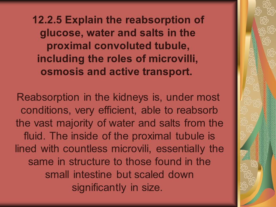 12.2.5 Explain the reabsorption of glucose, water and salts in the proximal convoluted tubule, including the roles of microvilli, osmosis and active t