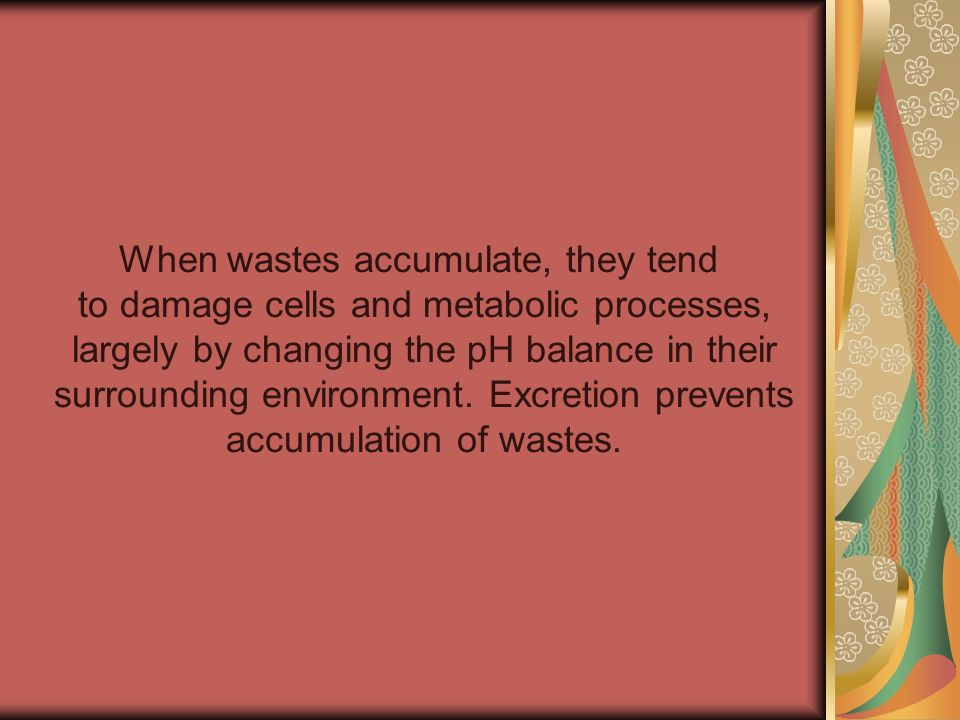 When wastes accumulate, they tend to damage cells and metabolic processes, largely by changing the pH balance in their surrounding environment. Excret