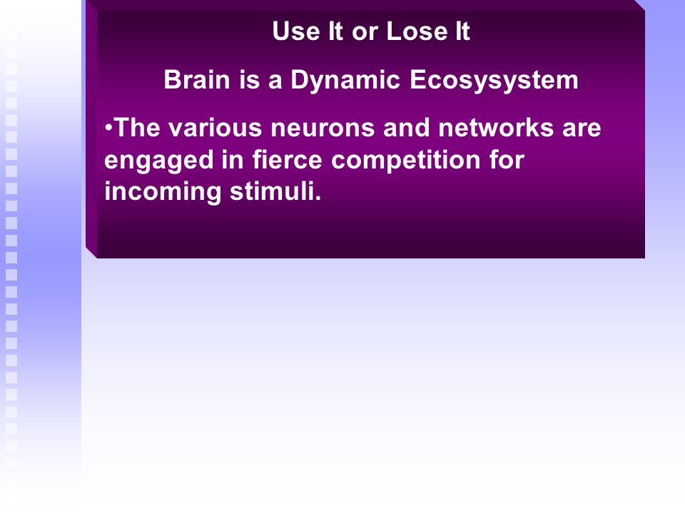 Use It or Lose It Brain is a Dynamic Ecosysystem The various neurons and networks are engaged in fierce competition for incoming stimuli.