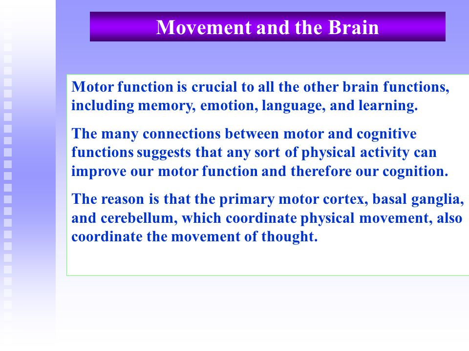 Movement and the Brain Motor function is crucial to all the other brain functions, including memory, emotion, language, and learning. The many connect