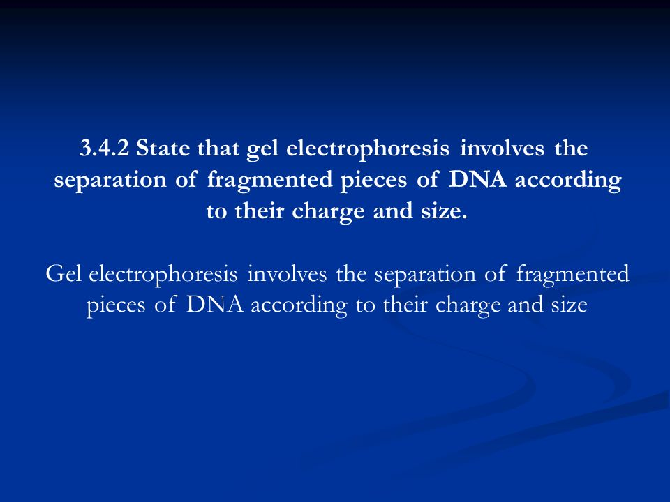 3.4.2 State that gel electrophoresis involves the separation of fragmented pieces of DNA according to their charge and size. Gel electrophoresis invol