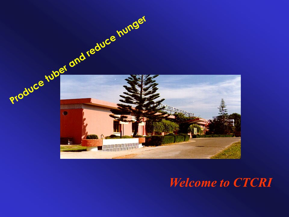 Welcome to CTCRI Produce tuber and reduce hunger