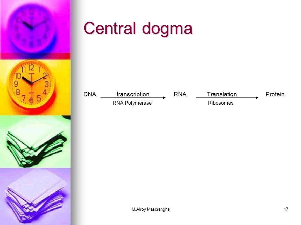 M.Alroy Mascrenghe17 Central dogma DNA transcriptionRNA Translation Protein RNA Polymerase Ribosomes RNA Polymerase Ribosomes