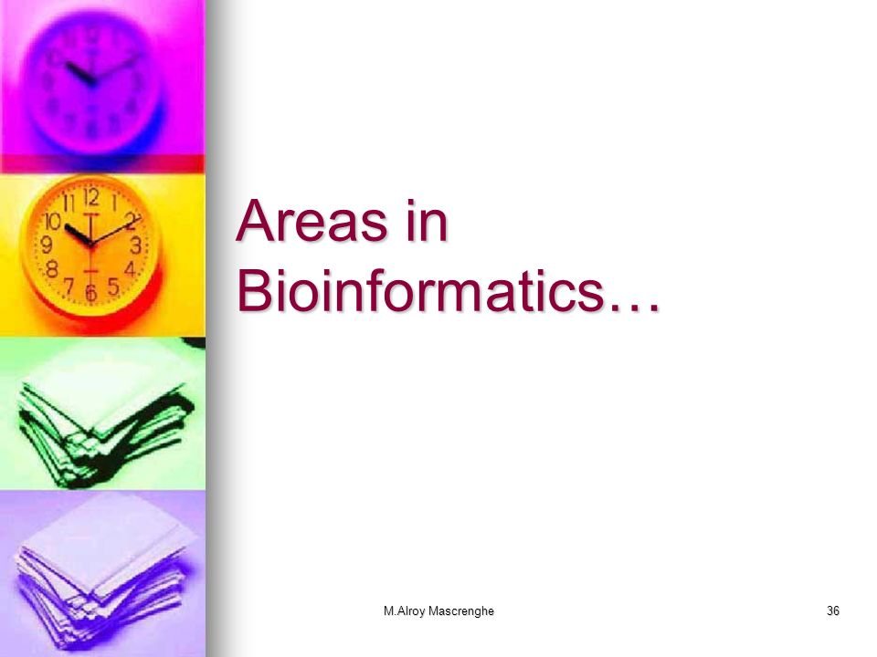 M.Alroy Mascrenghe36 Areas in Bioinformatics…