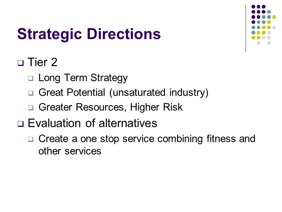 Strategic Directions Tier 2 Long Term Strategy Great Potential (unsaturated industry) Greater Resources, Higher Risk Evaluation of alternatives Create
