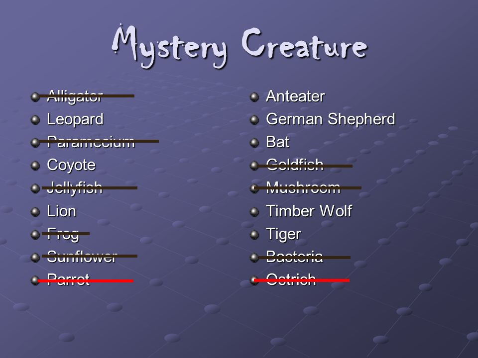 Mystery Creature AlligatorLeopardParameciumCoyoteJellyfishLionFrogSunflowerParrotAnteater German Shepherd BatGoldfishMushroom Timber Wolf TigerBacteri