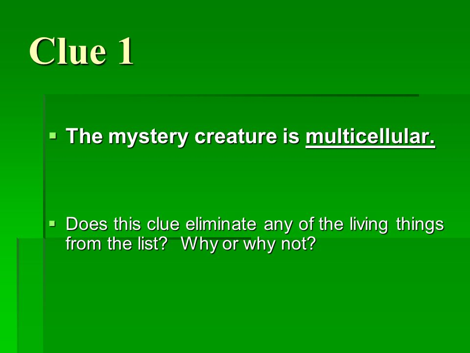 Clue 1 The mystery creature is multicellular. The mystery creature is multicellular. Does this clue eliminate any of the living things from the list?