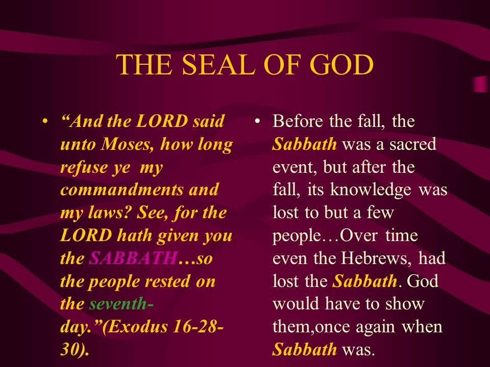 THE SEAL OF GOD Before the fall Adam and Eve enjoyed the blessings of the Sabbath…in its holy purity.