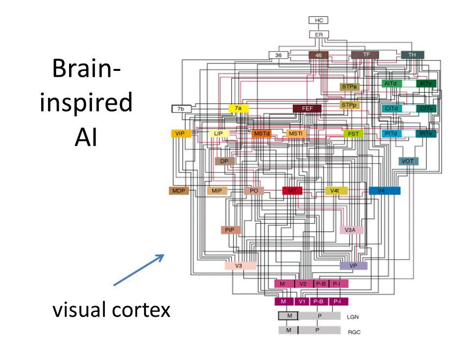 Brain- inspired AI visual cortex