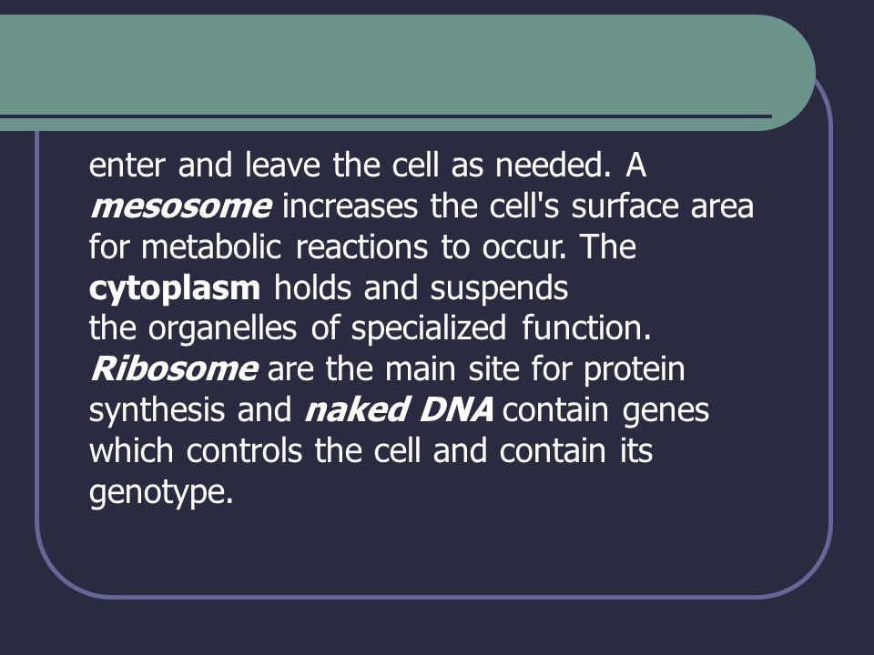 enter and leave the cell as needed. A mesosome increases the cell's surface area for metabolic reactions to occur. The cytoplasm holds and suspends th
