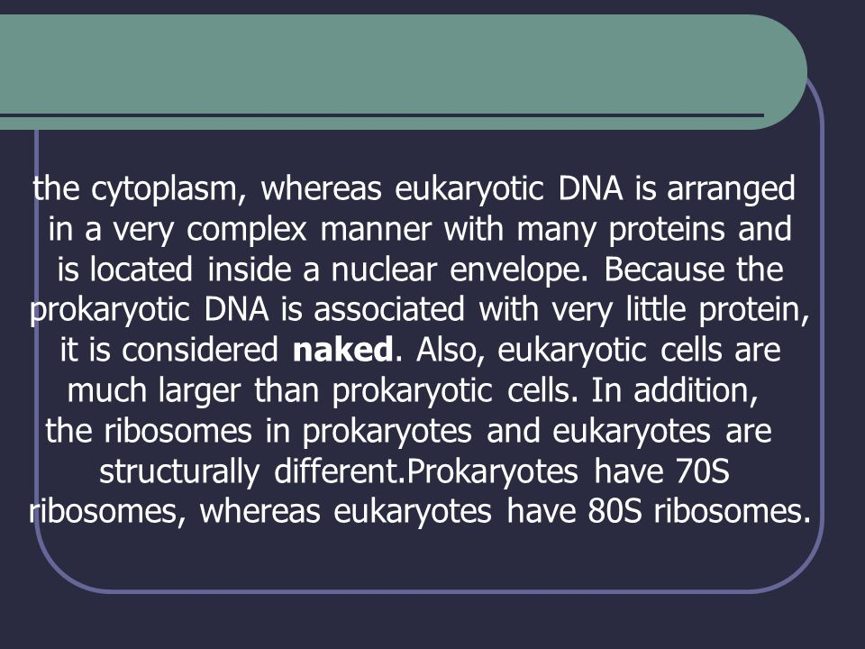 the cytoplasm, whereas eukaryotic DNA is arranged in a very complex manner with many proteins and is located inside a nuclear envelope. Because the pr