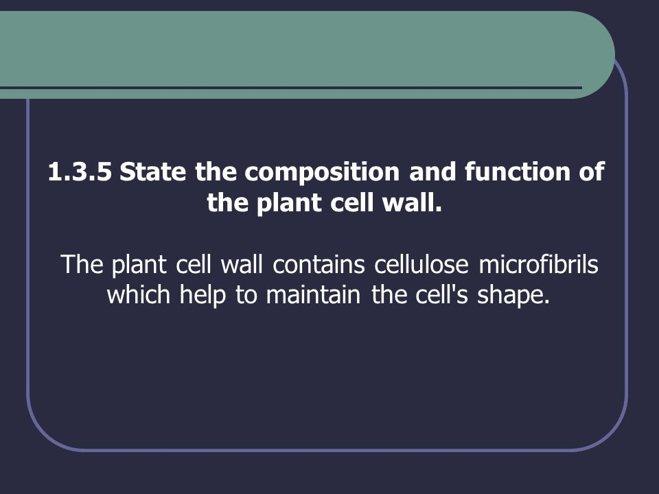 1.3.5 State the composition and function of the plant cell wall. The plant cell wall contains cellulose microfibrils which help to maintain the cell's