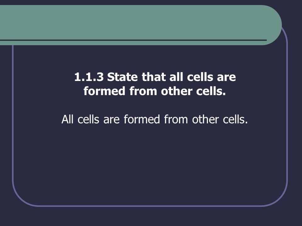 1.1.4 Explain three advantages of using light microscopes.