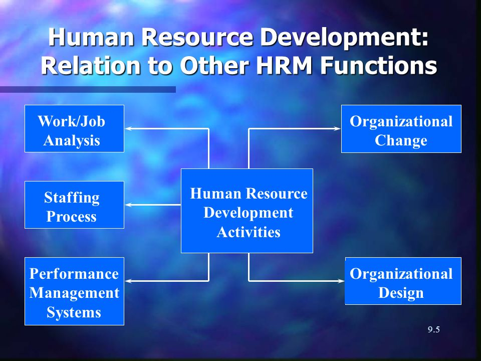 9.5 Human Resource Development: Relation to Other HRM Functions Work/Job Analysis Human Resource Development Activities Staffing Process Organizational Change Organizational Design Performance Management Systems