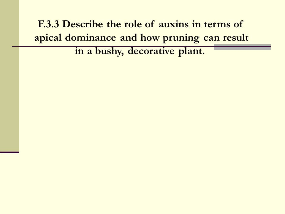 F.3.3 Describe the role of auxins in terms of apical dominance and how pruning can result in a bushy, decorative plant.