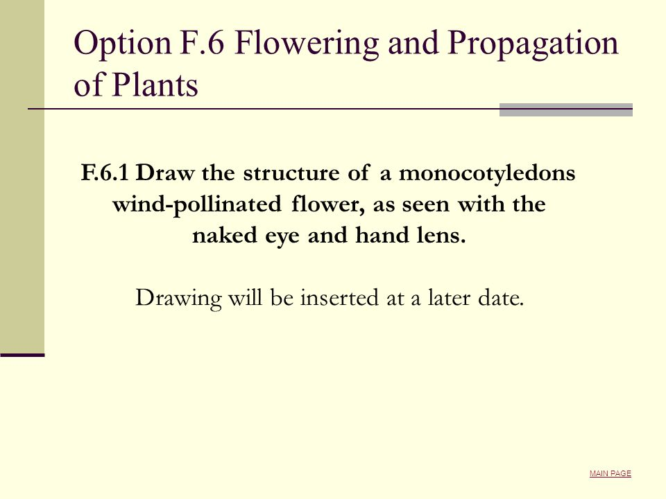 Option F.6 Flowering and Propagation of Plants F.6.1 Draw the structure of a monocotyledons wind-pollinated flower, as seen with the naked eye and han