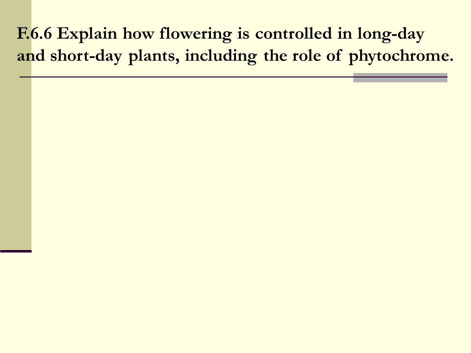 F.6.6 Explain how flowering is controlled in long-day and short-day plants, including the role of phytochrome.