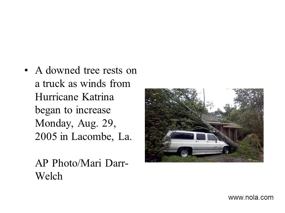 A downed tree rests on a truck as winds from Hurricane Katrina began to increase Monday, Aug.