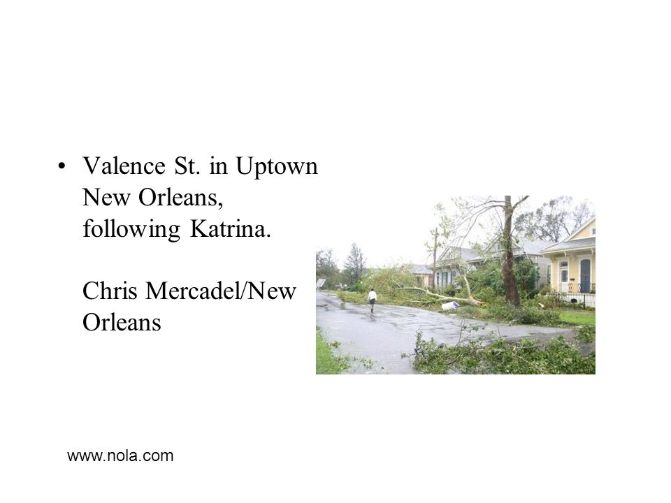 Valence St. in Uptown New Orleans, following Katrina. Chris Mercadel/New Orleans www.nola.com