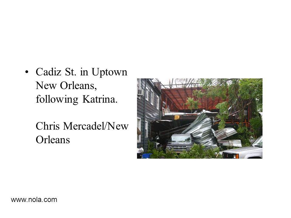 Cadiz St. in Uptown New Orleans, following Katrina. Chris Mercadel/New Orleans www.nola.com