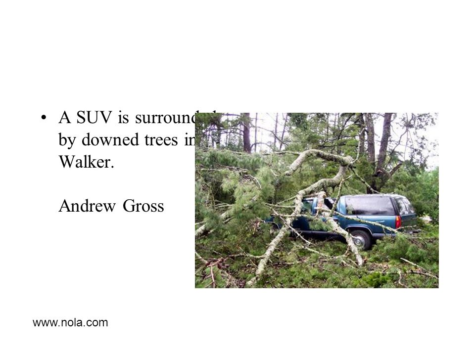 A SUV is surrounded by downed trees in Walker. Andrew Gross www.nola.com