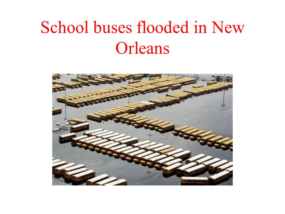 School buses flooded in New Orleans