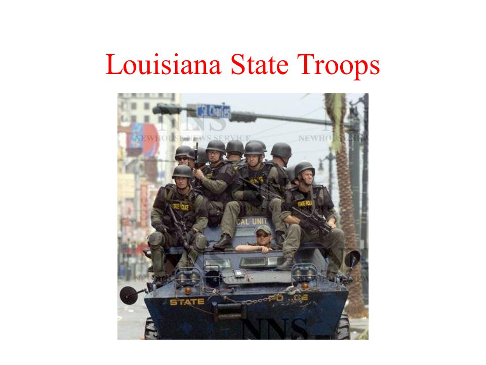 Louisiana State Troops