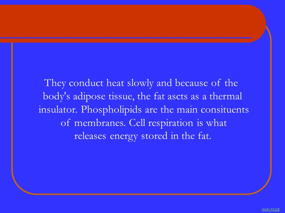 They conduct heat slowly and because of the body's adipose tissue, the fat ascts as a thermal insulator. Phospholipids are the main consituents of mem