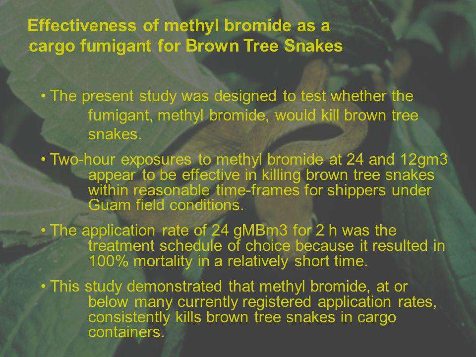 Effectiveness of methyl bromide as a cargo fumigant for Brown Tree Snakes The present study was designed to test whether the fumigant, methyl bromide,