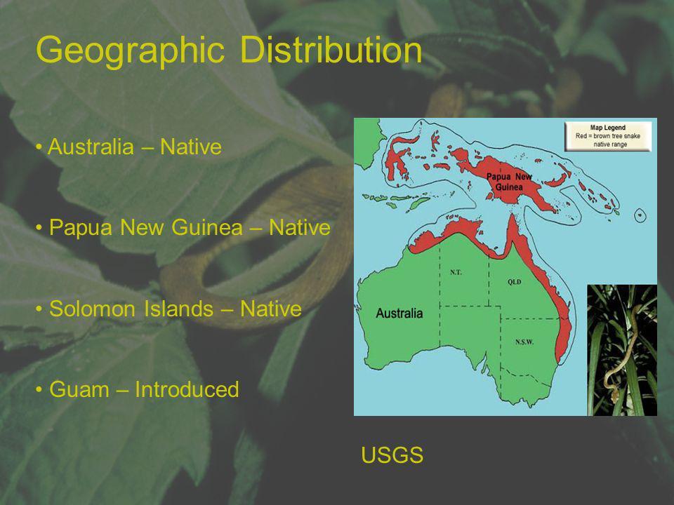 Geographic Distribution Australia – Native Papua New Guinea – Native Solomon Islands – Native Guam – Introduced USGS