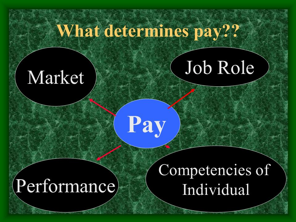 What determines pay Pay Job Role Market Performance Competencies of Individual