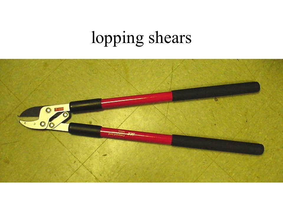 lopping shears