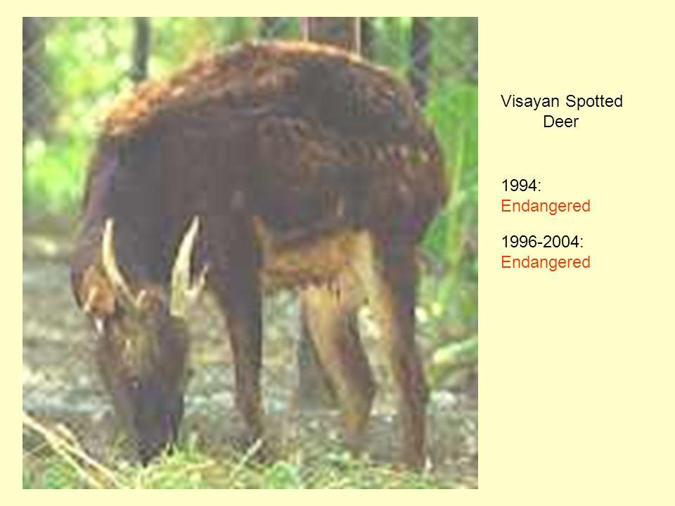 Visayan Spotted Deer 1994: Endangered 1996-2004: Endangered