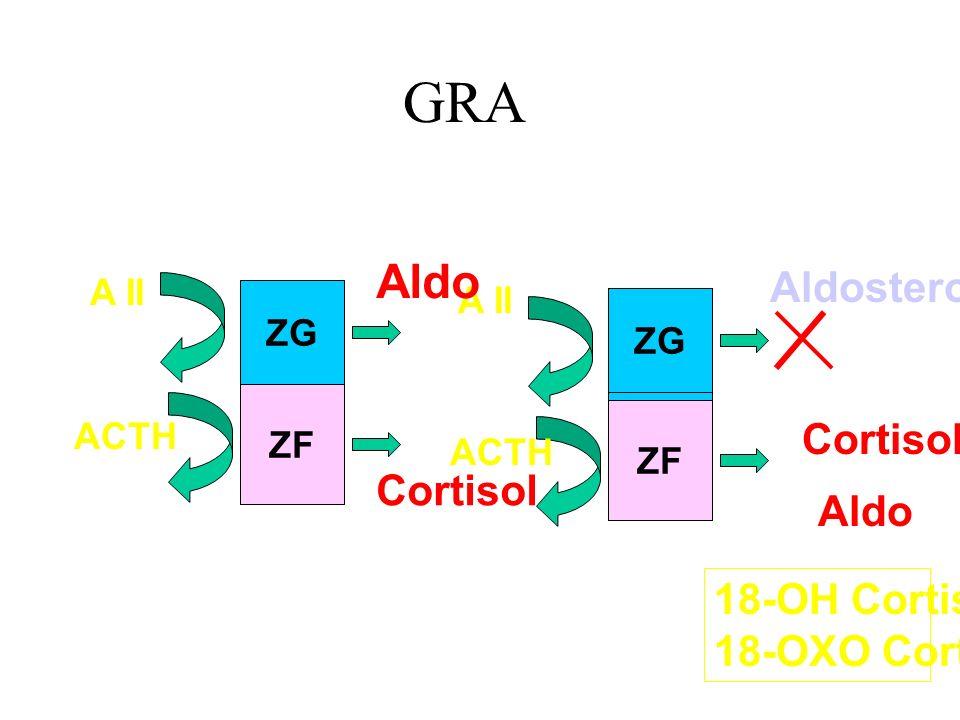 GRA ZF ZG A II ACTH Aldo Aldosterone Cortisol Aldo 18-OH Cortisol 18-OXO Cortisol ZG ZF Normal GRA